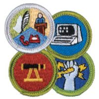 Merit Badge Logo