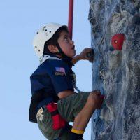 cub-climbing